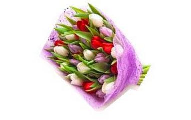 Il fiore del sultano