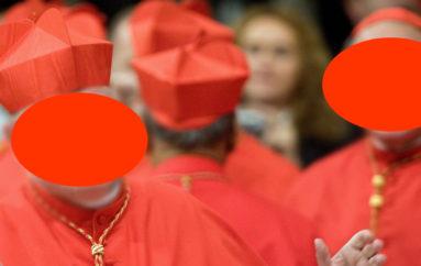 Vita da cardinale