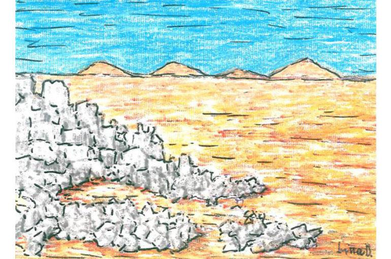 I deserti della siria