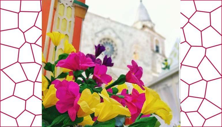 I fiori di san pardo