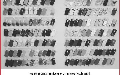 www.su-mi.org:  new school