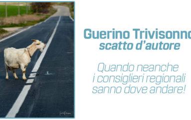scatto d'autore di Guerrino Trivisonno
