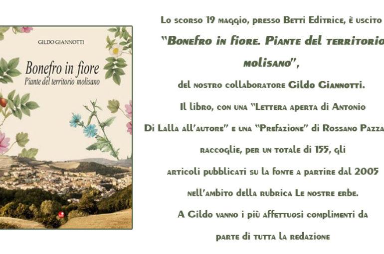 """Introduzione a """"Bonefro in fiore"""""""