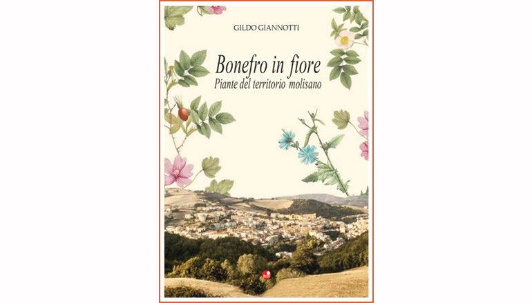 """Recensione libro: """"Bonefro in fiore"""" di Gildo Giannotti"""