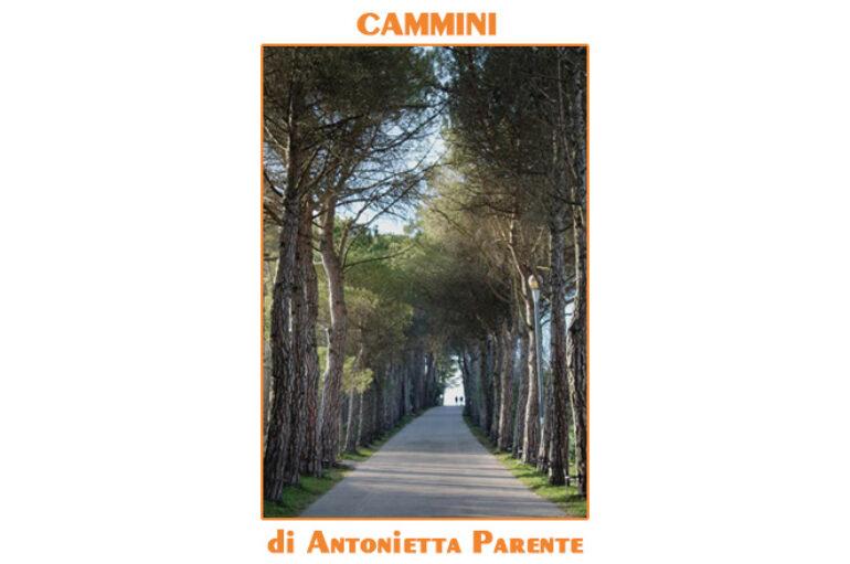 foto Antonietta Parente: cammini