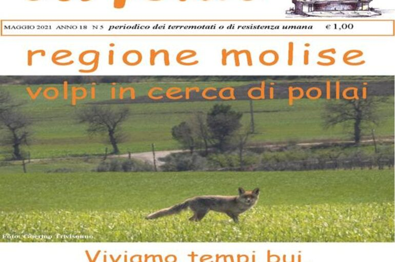 Molise: campagna vaccinale